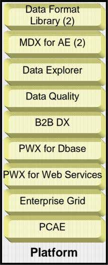 Data Format Library (2) MDX for AE (2) Data Explorer Data Quality B2B DX PWX