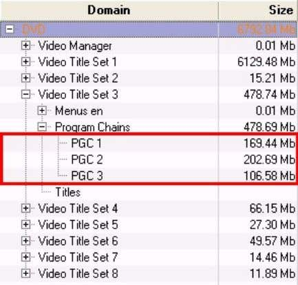 more Program Chains (PGC). These PGCs contain the video, audio and subpicture streams that make up