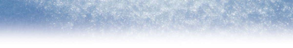 The areas most vulnerable to freezing are: • The wing root area between the front