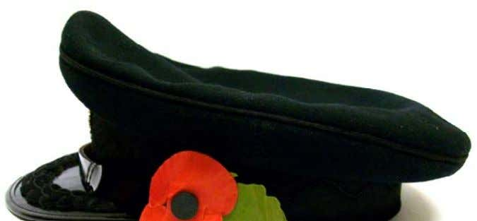 Sunday and for 7 days prior to that event as follows: Forage Cap: The poppy with