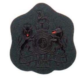 on Rifle Green background Worn in Pullover /Overall orders. Rank NSN WO1 8455-99-130-4391 WO2 Wreath &