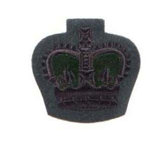 "8455-99-973-8897 These Rank Insignia tend to ""run and shrink"" when washed and are only suitable for"