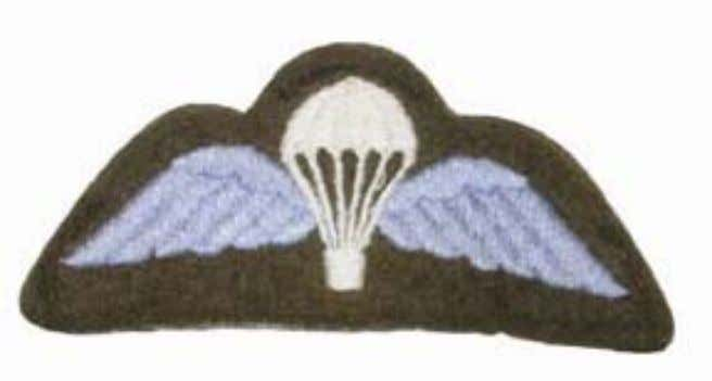 Qualification Badges Worn on right arm above the Cr oix de Guerre on No1, No2, No3,