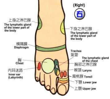 "that every reflexologist must first take care of his or her own health. ""This must be"