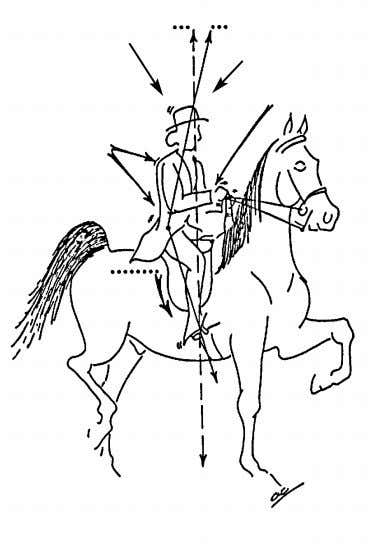 horse, posting forward & back — not up & down. Incorrect saddle seat (rider behind motion