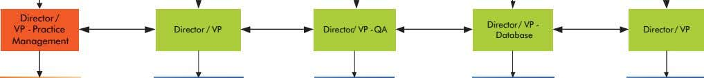 Director / VP - Practice Management Director / VP Director/ VP -QA Director/ VP -