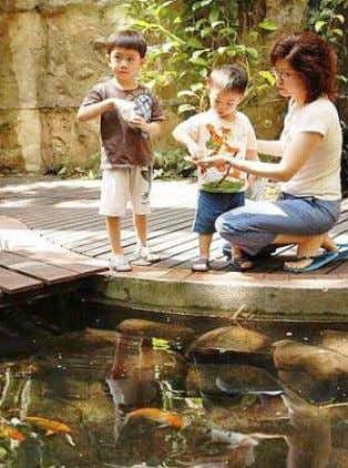 Children taking part in the Feed-the-Fish programme in One Utama. Source: The Star Online Going
