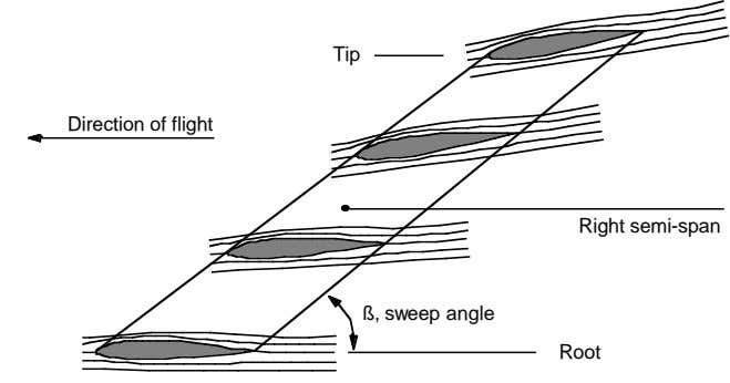 Tip Direction of flight Direction of flight Right semi-span ß, sweep angle Root