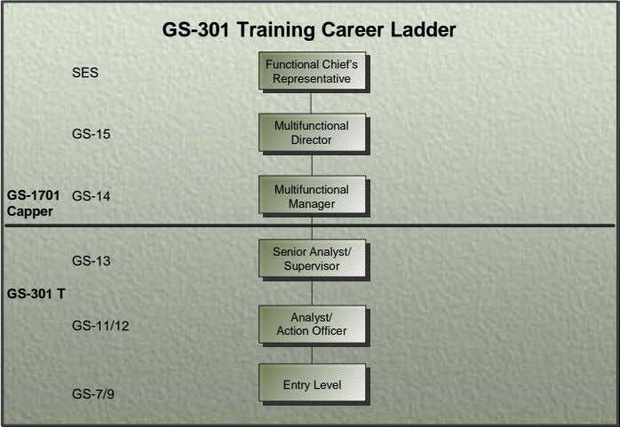 GS-301 Training Career Ladder Functional Chief's SES Representative Multifunctional GS-15 Director Multifunctional GS-1701 GS-14 Manager Capper