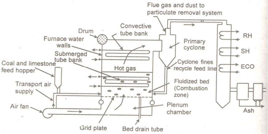 back to the bed. The boiler water tubes are in the furnace. Fig. 3: Schematic of