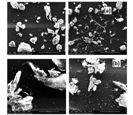 of milling can result in finer particles with harder phases. FIGURE 2 SEM MICROGRAPHS OF 50:50