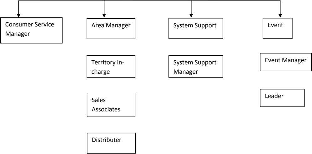 Consumer Service Area Manager System Support Event Manager Event Manager Territory in- System Support charge
