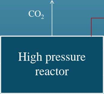 CO 2 High pressure reactor