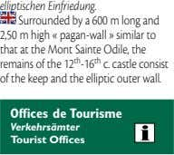 elliptischen Einfriedung. Surrounded by a 600 m long and 2,50 m high «pagan-wall » similar