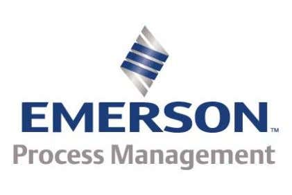 The Simulated Process TM TM EMERSON Process Management Educational Services C o p y r i