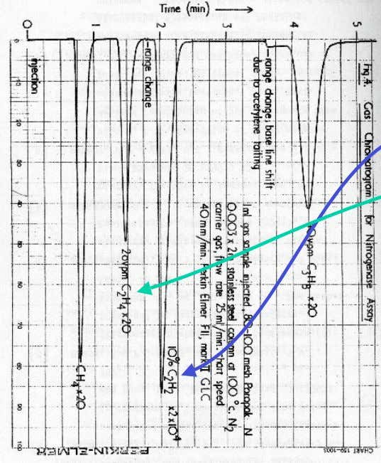 Acetylene reduction assay A typical trace following gas chromatography The greatest peaks are of residual acetylene