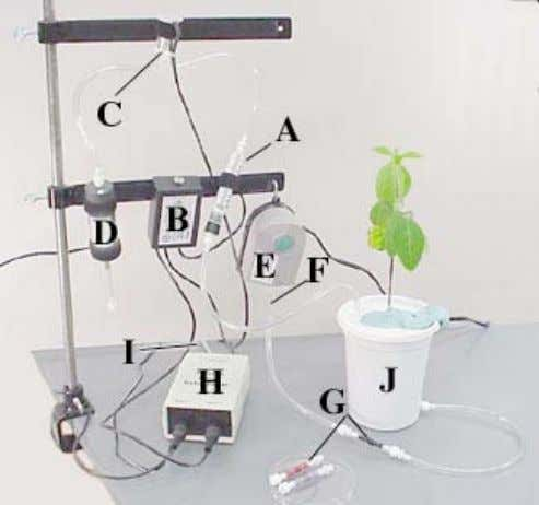 Hydrogen evolution assay • Reduction of dinitrogen to ammonia N + 8H + 8e → 2NH