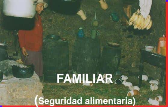 FAMILIAR (Seguridad alimentaria)