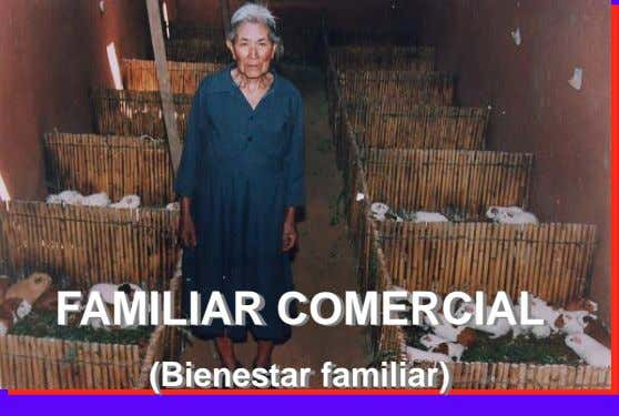 FAMILIAR COMERCIAL (Bienestar familiar)