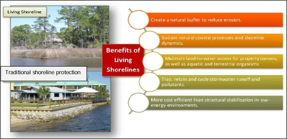 Traditional shoreline protection