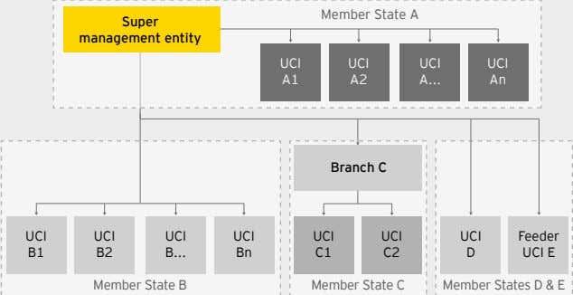 Member State A Super management entity UCI UCI UCI UCI A1 A2 A An Branch