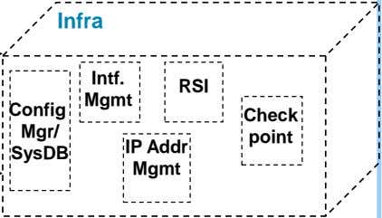 Infra Intf. RSI Mgmt Config Check Mgr/ point IP Addr SysDB Mgmt