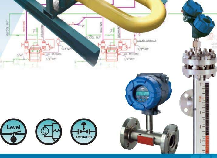 LEVEL AND FLOW INSTRUMENTS FOR MODULAR SKID SYSTEMS S P E C I A L A
