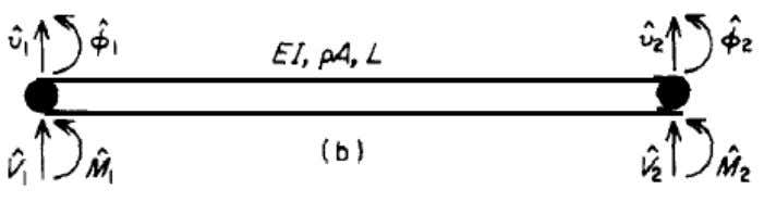 displacement of the beam is given as   ∑ ̂ (2) Figure 3.4 Nodal loads and