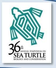 ASO Network Poster Session Room: Auditorium March 2,3 FIRST CAPTURES OF LEATHERBACK SEA TURTLES (Dermochelys coriacea)