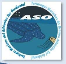 ASO Network Poster Session Room: Auditorium March 2,3 FIRST CAPTURES OF LEATHERBACK SEA TURTLES (Dermochelys