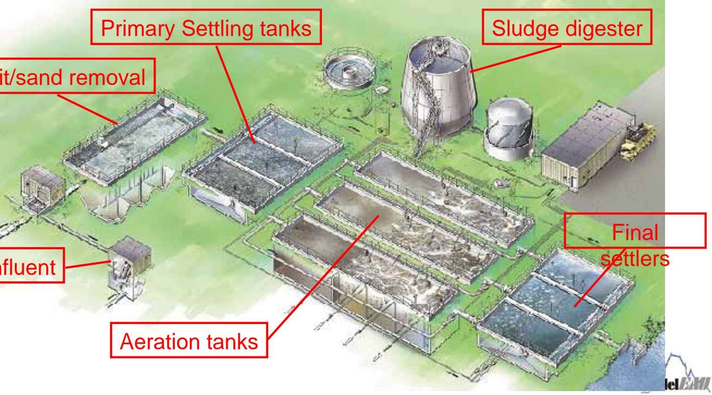Primary Settling tanks Sludge digester Final settlers Aeration tanks