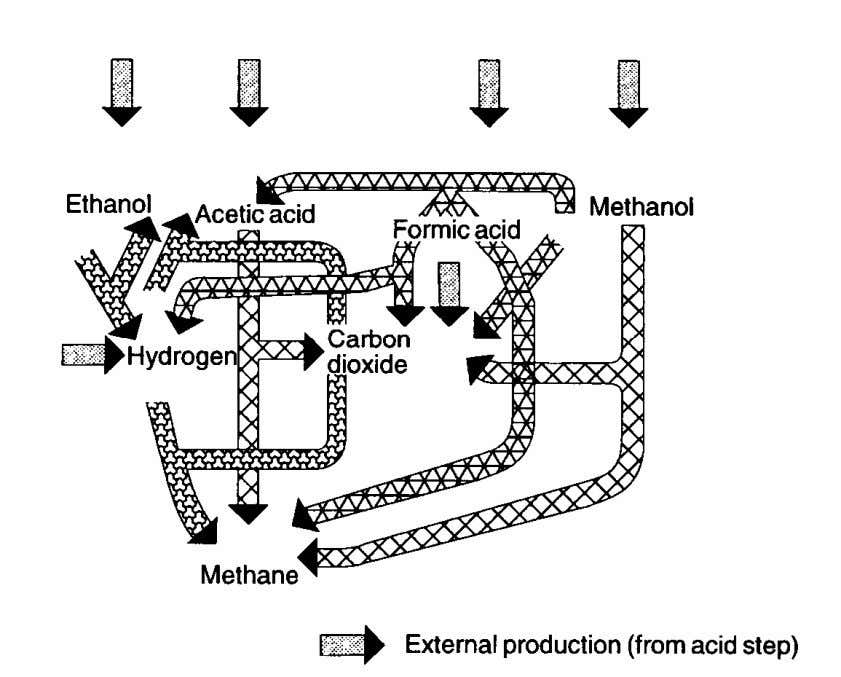 Treatment Processes (5) Anaerobic Digestion: methanation step www.mbr-network.eu