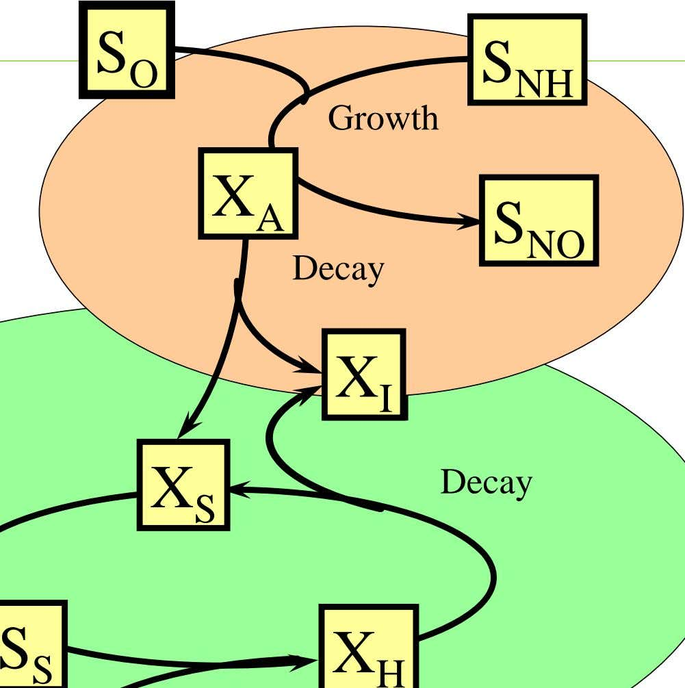 S O S NH Growth X A S NO Decay X X I I Decay