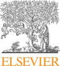 Journal of Cleaner Production 52 (2013) 329 e 341 Contents lists available at SciVerse ScienceDirect Journal