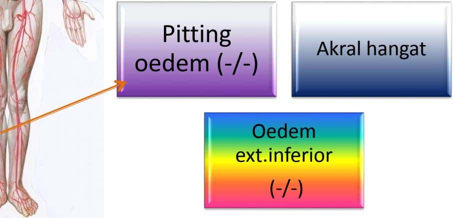 Pitting Akral hangat oedem (-/-) Oedem ext.inferior (-/-)