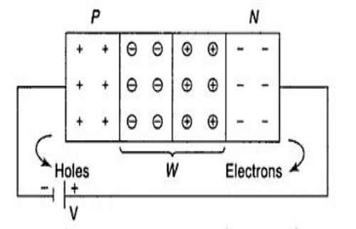 are attracted towards the positive terminal of the battery. Figure 1.7 PN junctions under reverse bias