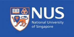 Professor National University of Singapore Centre for Offshore Research & Engineering National University of Singapore