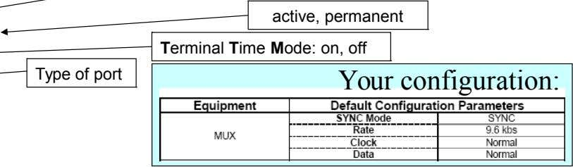 active, permanent Terminal Time Mode: on, off Type of port Your configuration: