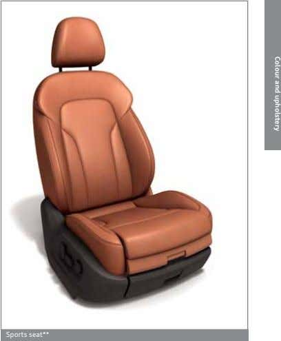 Colour and upholstery Sports seat**