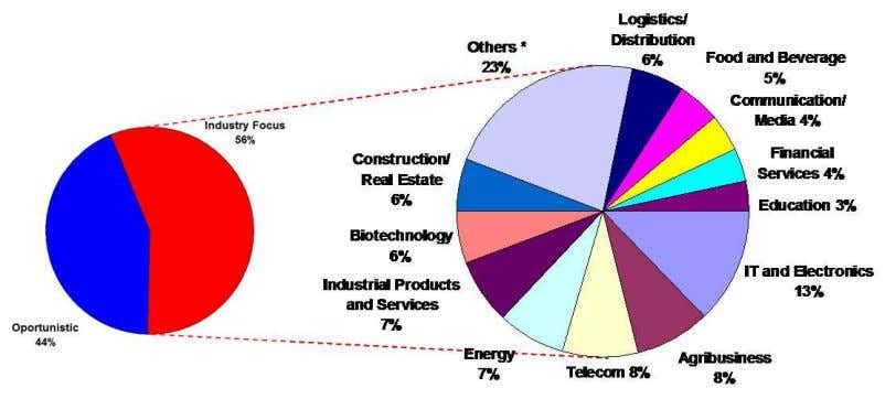 within the macro-sectors listed. 31 Vehicle Industry Focus * Encompasses 14 sectors with less than 15