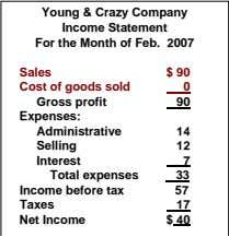 Young & Crazy Company Income Statement For the Month of Feb. 2007 Sales Cost of