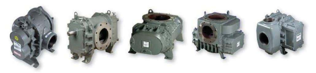 Roots* Rotary Lobe Positive Displacement Blowers Universal RAI* Series | RAM* Series | RCS* Series |