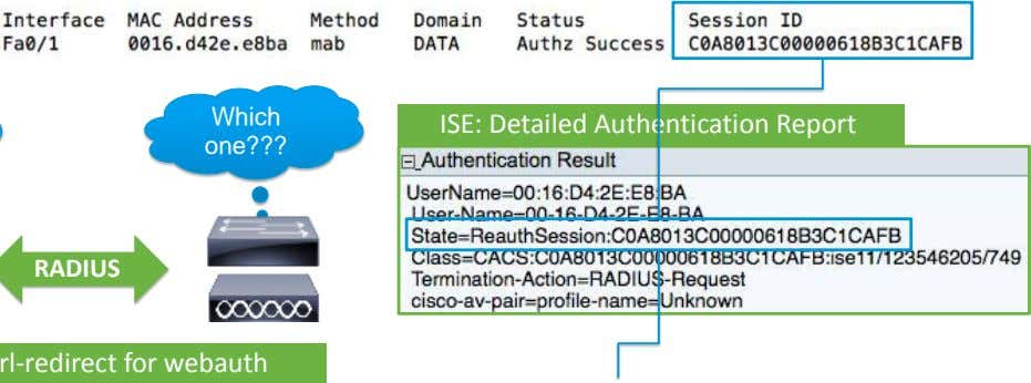 Which ISE: Detailed Authentication Report one???