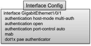 Interface Config interface GigabitEthernet1/0/1 authentication host-mode multi-auth authentication open authentication