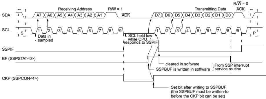 Then the SCL pin should be enabled by setting the CKP bit. Figure 8: I 2
