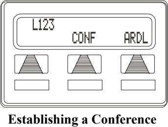 L123 CONF ARDL Establishing a Conference