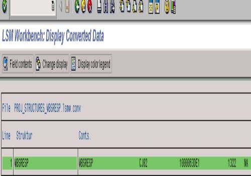 11. DISPLAY CONVERTED DATA • The system will display a listing • of the converted records.