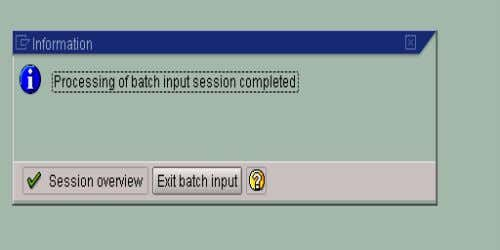 13. RUN BATCH INPUT SESSION • If it successfully processes the converted records, you will see