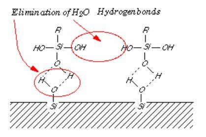 water between the -OH pairs at the hydrated silica surface and the silane as well as