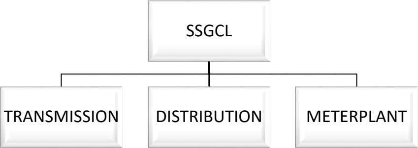 SSGCL TRANSMISSION DISTRIBUTION METERPLANT